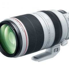 Canon EF 100-400mm f/4,5-5,6 IS II L USM — para ver longe