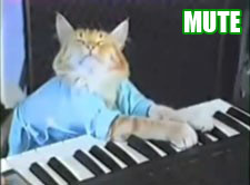 Keyboard Cat: mudo.